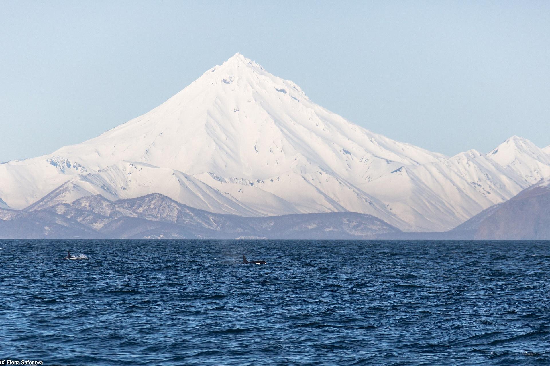 Vilyuchinskiy volcano